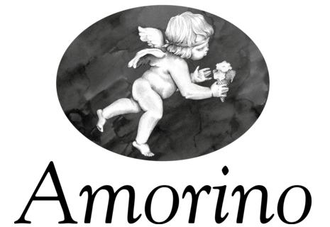 Amorino Lyon République