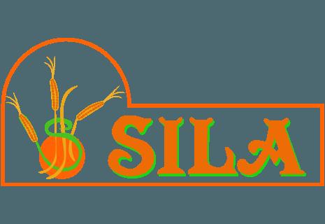 Sila-avatar