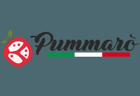 Pizzeria Pummarò-avatar