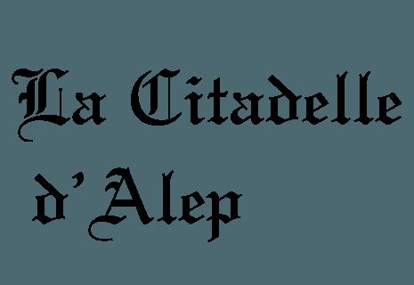 La Citadelle d'Alep-avatar