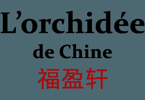 L'orchidee de chine