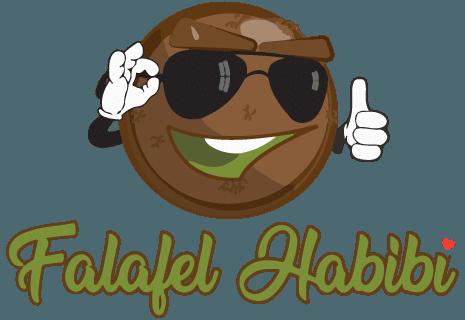 Falafel Habibi