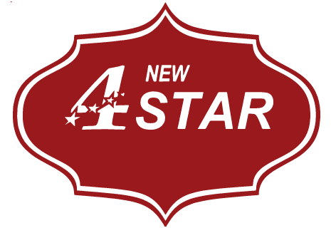 logo NEW4STAR - Authentic Indian-Pakistani