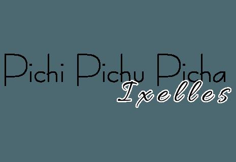 Pichi Pichu Picha