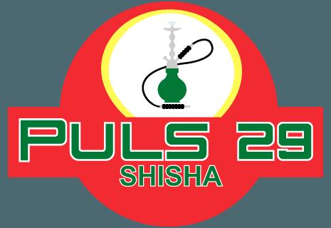 Puls 29