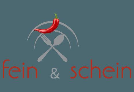 Fein & Schein