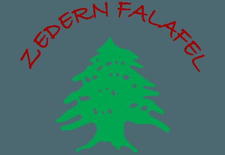 Zedern Falafel