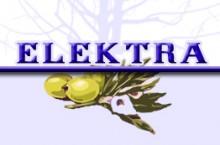 Elektra Bringdienst