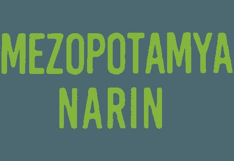 Mezopotamya Narin Döner Kebap