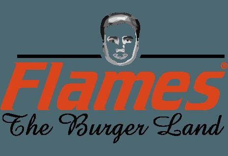 Flames - The Burger Land