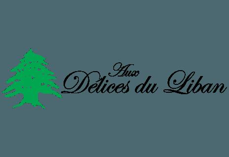 Aux Délices du Liban Toulouse