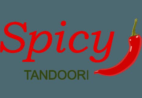 Spicy Tandoori