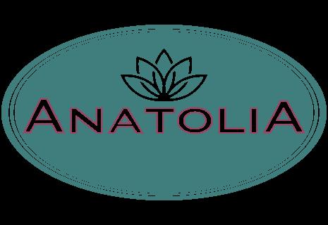 Anatolia 23