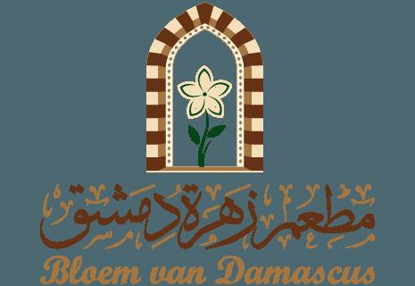 Bloem van Damascus