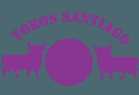 Toros Santiago Delft