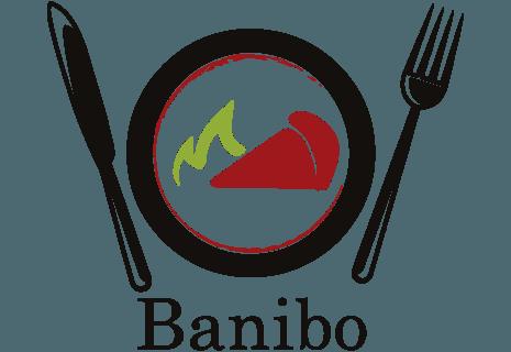 Banibo Hoogvliet