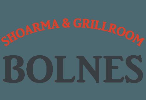 Shoarma Bolnes