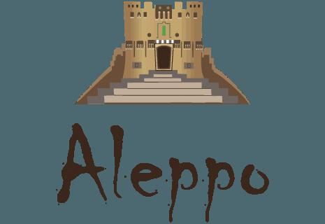 Kasteel Aleppo