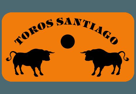 Toros Santiago