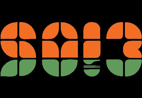 SOI 3