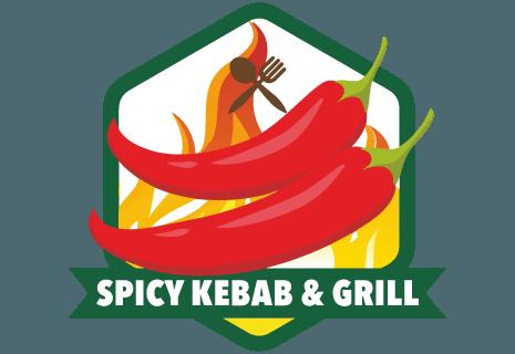 Spicy Kebab & Grill Wola