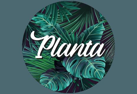Planta-avatar