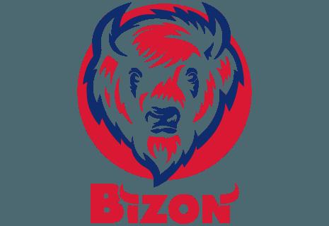 Bizon Pub & Restaurant
