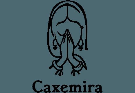 Caxemira-avatar
