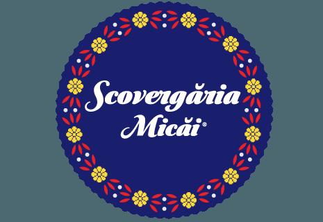 Scovergăria Micăi