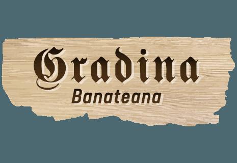 Gradina Banateana